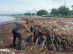 seorang-warga-melihat-tumpukan-sampah-di-pantai-muaro-lasak-padang-kamis-1412021.jpg