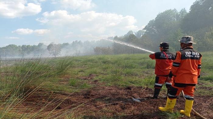 Puntung Rokok Picu Karhutla, 5 Hektar Lahan Gambut Terbakar di Indralaya Selatan