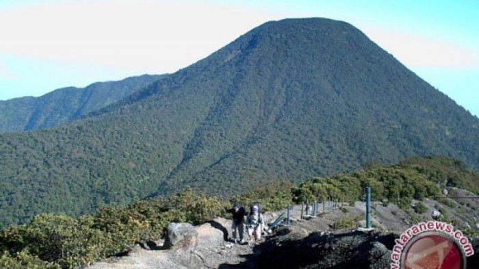 Lembah Kaki Gunung Pangrango Tawarkan Paket Wisata Ternak Lebah Madu