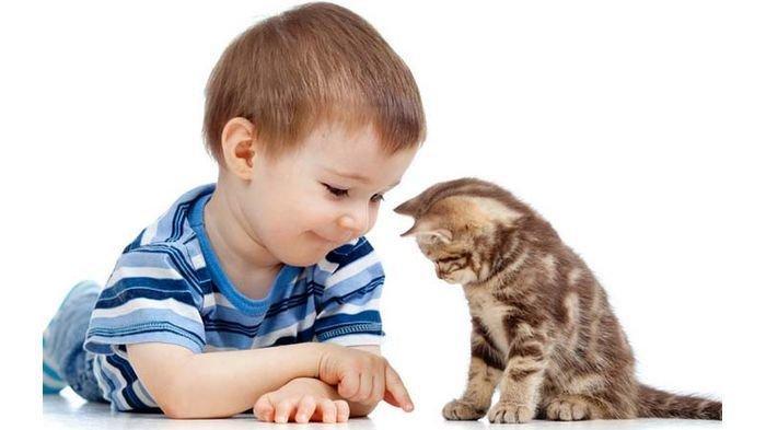 Puisi Conie Sema : Kucing dan Dadu