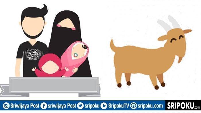 Bolehkah Kurban dan Aqiqah Digabung? Jangan Keliru, Begini Hukumnya Berdasarkan 4 Mazhab dalam Islam