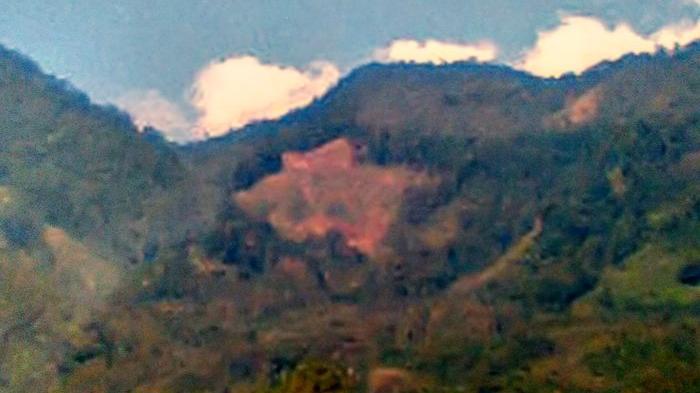 Perbukitan di Lahat Gundul, Areal Sawah di Dua Desa Kering