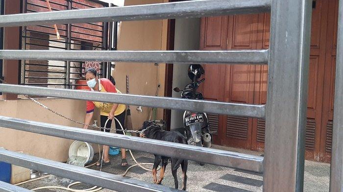 'Kalau Covid-19 Kami Kabur', ART Beberkan Penyakit Heriyanti, Anak Akidi Tio Terbaring di Rumah