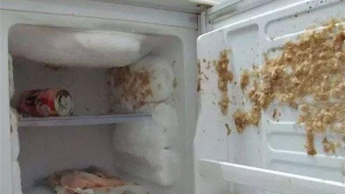 Tak Ingin Freezer Meledak, Jangan Simpan  3 Jenis Minuman dan Makanan Ini di Dalamnya