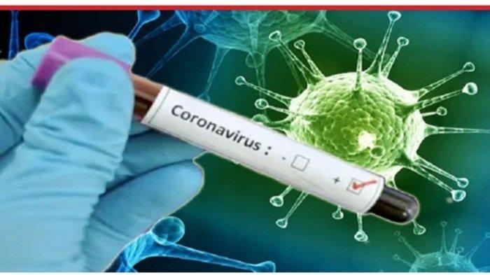 Virus Corona Varian Baru R.1 Jadi Perhatian Peneliti AS, Sudah Terdeteksi di 47 Negara AS, Bahaya?