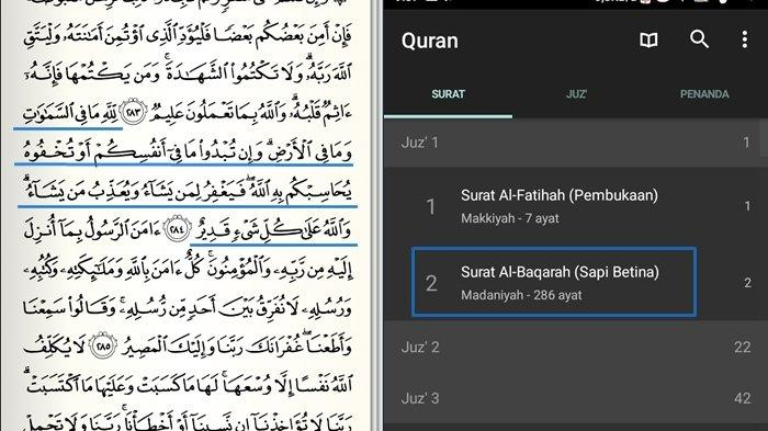 Sebesar Apapun Dosamu Jika Ucapkan Ini Maka akan Diampuni Allah, Bacalah Surat Al-Baqarah Ayat 284