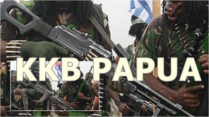 7 Kelompok KKB Papua yang Diduga Menguasai Medan Perbukitan dan Pengunungan di Kawasan Papua