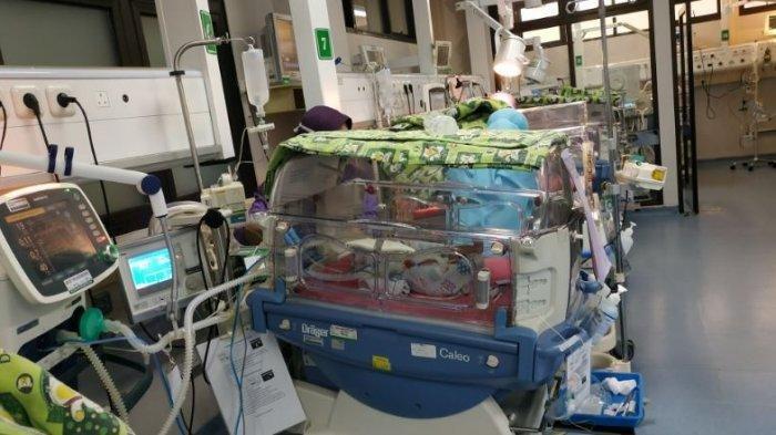 BREAKING NEWS: Bayi Kembar 3 yang Lahir di RSMH Palembang Dibantu Alat Bernafas, Berat Badan Kurang