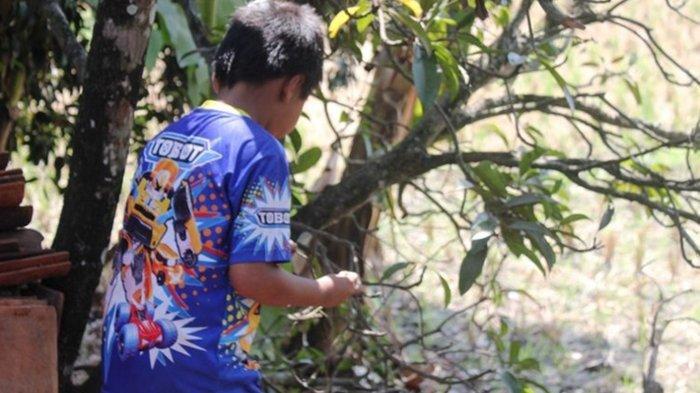 Memiliki Kebiasan Tak Lazim, Bocah Penggigit Hewan di Cianjur Akan Mendapat Penanganan Serius