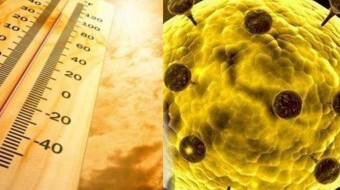 Temuan Baru Gejala Virus Corona, Ada Sensasi Terbakar di Bagian Ini Selain Hilang Indra Penciuman