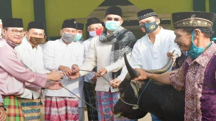 Bupati Musirawas H Hendra Gunawan Kurban 19 Ekor Sapi di Hari Raya Idul Adha 1414 H