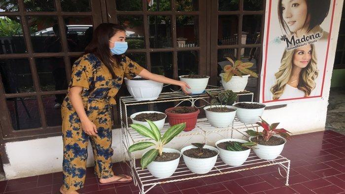Madona Warga Sukarami Palembang Kaget 5 Bunga Aglonema Miliknya Dicuri, Aksi Pelaku Terekam CCTV
