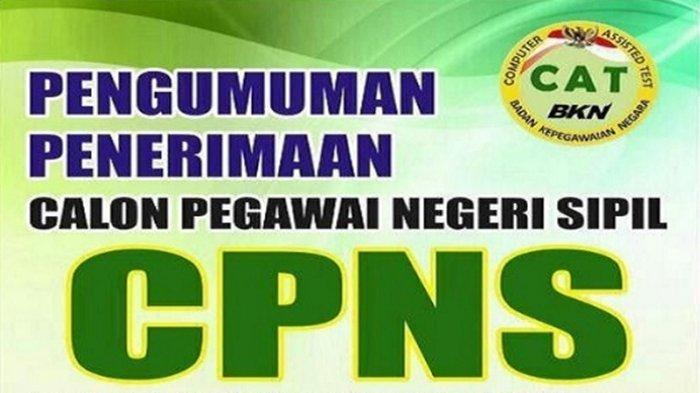 Berita Pagaralam: BPKSDM Pagaralam Umumkan Penutupan Pendaftaran CPNS 2018 Diperpanjang