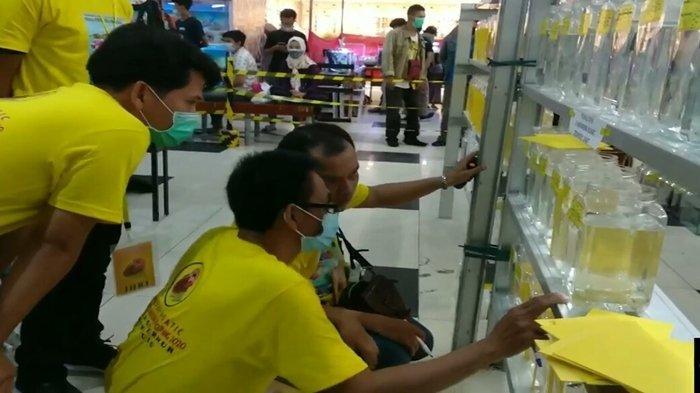 Akan Segera Hadir Kontes Ikan Cupang di Gramedia World Palembang Berhadiah Jutaan Rupiah, GRATIS