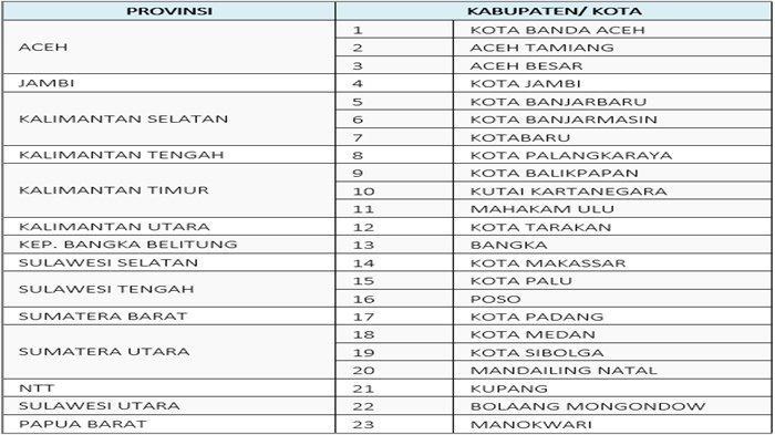 Daftar Kab/Kota di luar Jawa Bali yang akan menerapkan PPKM Level 4.