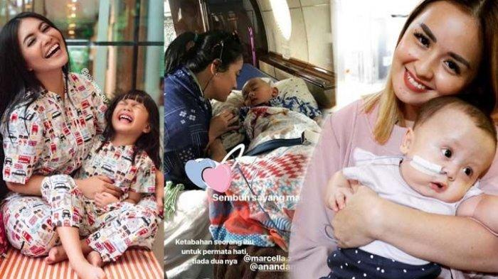 3 Artis ini Tegar Berjuang Demi Kesembuhan Anaknya: Denada, Joanna Alexandra dan Marcella Zalianty