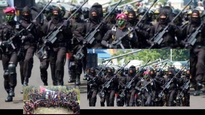 TNI Utus Pasukan Misterius untuk Tumpas KKB Papua? OPM Kirim Sinyal Perlawanan, Begini Faktanya
