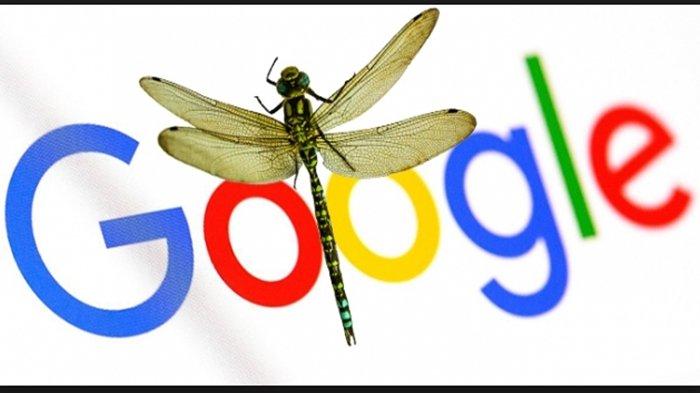 Google Kini Genap Berusia  22 Tahun,  Berawal dari Salah Tulis, Lalu, Baca Saja Kisahnya Berikut Ini