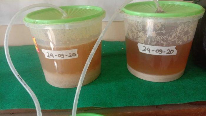 Eco Enzyme dapat menjadi salah satu jawaban sebagai upaya menuju pertanian lebih ramah lingkungan sesuai dengan harapan BPPSDMP.