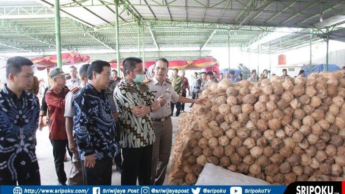 Kepala BPS Sebut Penolakan Kelapa ke Thailand Tak Pengaruhi Ekspor Sumsel