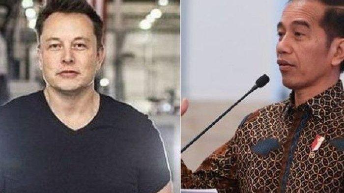 Karena Kandungan Perut Bumi Indonesia Ditawarkan Jokowi, Elon Musk Bakal Jadi Miliarder Sejagat
