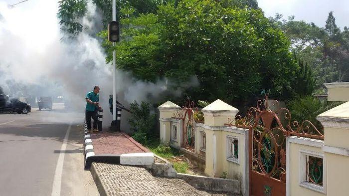 Perubahan Cuaca dan Wabah Demam Berdarah Dengue