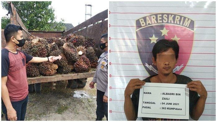Pak Belalang Masuk Dalam Sindikat Pencuri, Digulung Tim Polsek Baturaja Barat & Polsek Lubukbatang