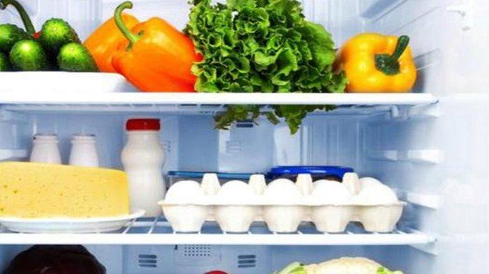 Ilustrasi freezer