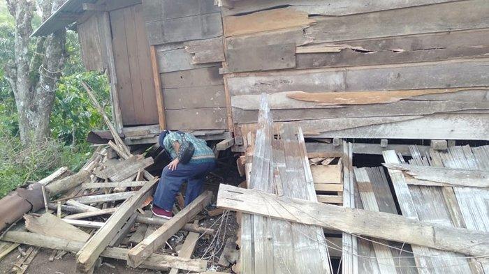 Serangan Gajah Liar Porak-Porandakan Pondok Warga Desa Kota Dalam di Area Kebun Kopi, Sudah Sering