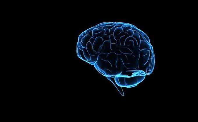 8 Tips Mudah untuk Mencegah Otak Jadi Pelupa, Menurut Sains