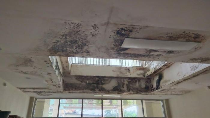 Baru Selesai Dibangun Sudah Berlumut, Gedung Rawat Inap RSUD Rupit Muratara Senilai Rp 14,3 Miliar