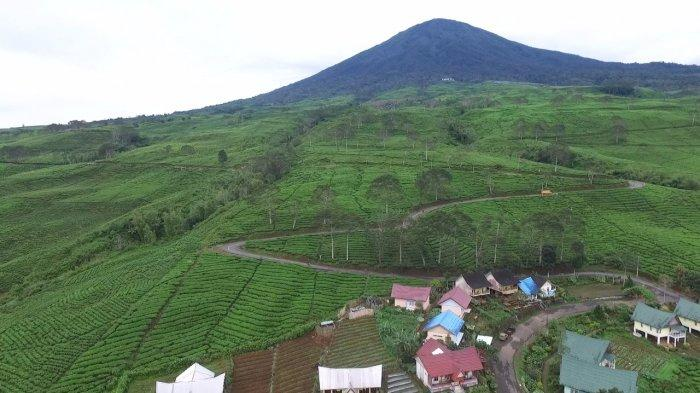 Baru Dilalui Ratusan Pendaki, Kawasan Puncak Gunung Dempo Pagaralam Kembali Ditutup, Ini Alasannya