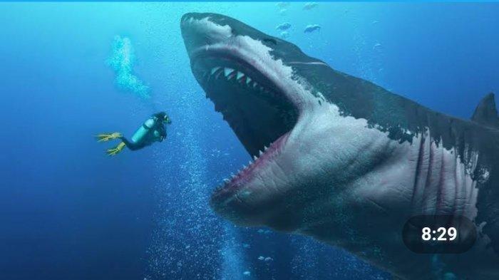 Gigi Megalodon Ditemukan di Filipina, Predator Purba Penguasa Laut Kalahkan Ukuran Kapal Ini Punah!