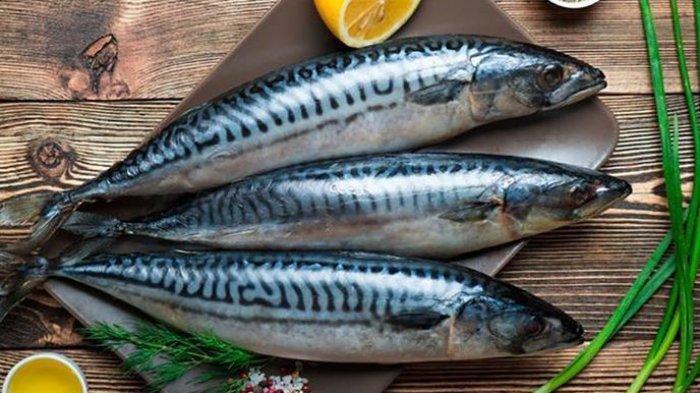 Inilah 9 Makanan yang Mengandung Kalsium Tinggi (1): Biji-bijian, Keju, Yogurt dan Ikan Sarden