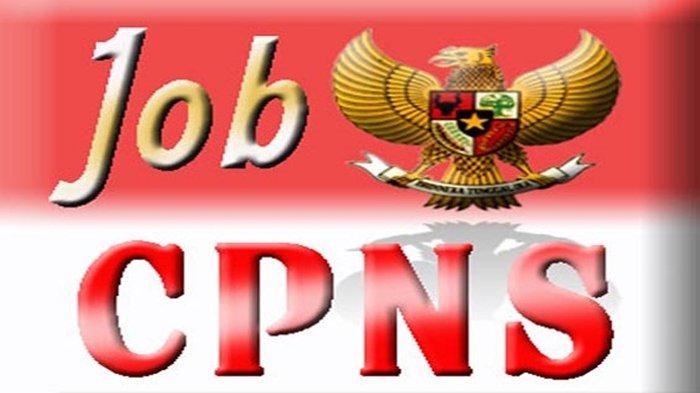 Pemprov Sumsel Usulkan Formasi Penerimaan Pegawai Sejumlah 500 Orang, 70% untuk P3K & 30% untuk ASN
