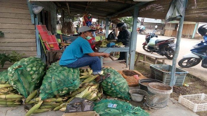 H-2 Tahun Baru 2020, Harga Jagung di Tegal Binangun Palembang Rp 8000 per Kilogram