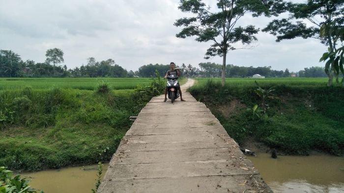 Jembatan Penghubung Antar Desa di Kecamatan Semendaweai Suku III OKU Timur Ini Membahayakan