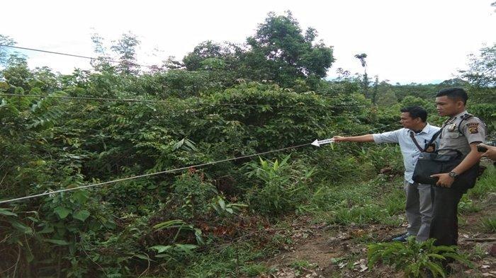 Kabel Listrik Nyaris Sentuh Tanah, Seorang Perempuan di Gumay Ulu Lahat Tewas Tersengat Listrik