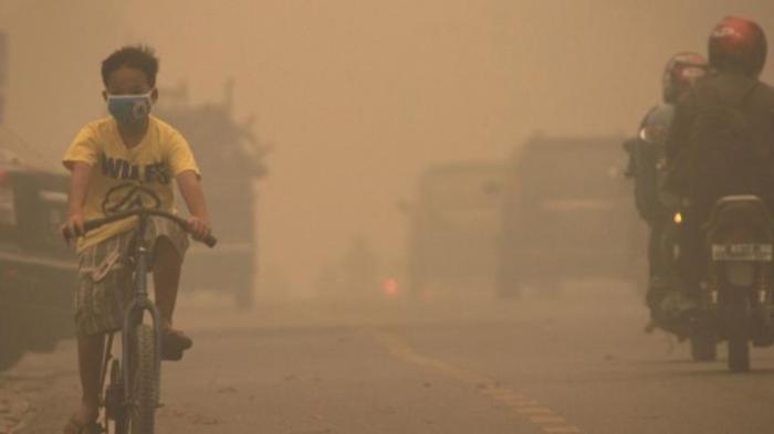 Kabut, Jarak Pandang di Kecamatan Rengat, Riau, Hanya 100 Meter