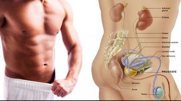 Inilah 5 Makanan Pencegah Kanker Prostat yang Harus Dikonsumsi Para Pria