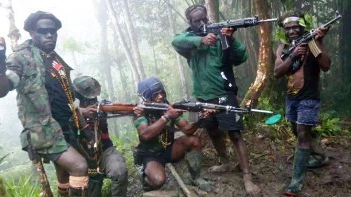 KKB Papua Miliki Senjata Canggih dari Austria, Diselundupkan Lewat Jalur Tikus: Jarak Tembak 500 M