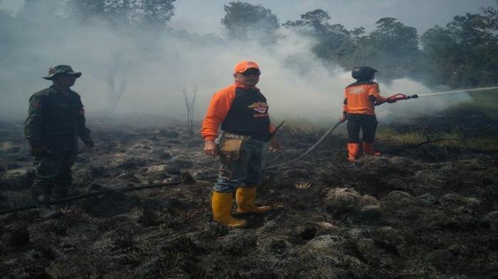 Api Cepat Membesar, 5 Hektar Lahan Terbakar di Desa Tempirai PALI