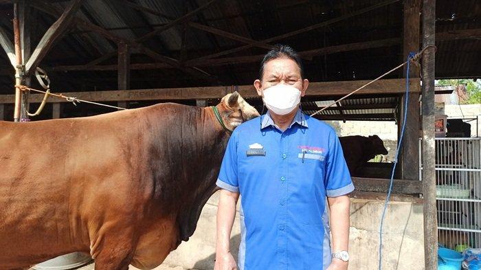 Kepala Dinas DPKP Kota Palembang Ir Sayuti MM berfoto dengan salah satu sapi yang layak dikurbankan.