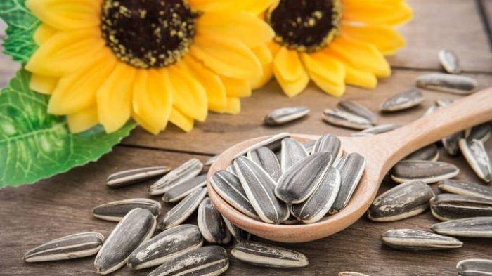 Biji Bunga Matahari Ternyata Bermanfaat untuk Menjaga Kesehatan Jantung dan Turunkan Berat Badan