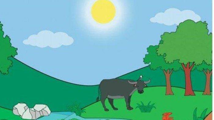 Tema 5 Kelas 3 Kunci Jawaban Halaman 50 51 55 56 Pembelajaran 1 Subtema 2 Materi Soal Keadaan Cuaca
