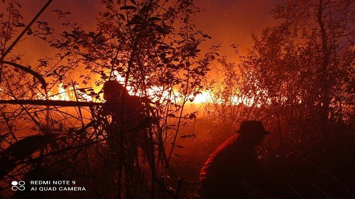 BREAKING NEWS: Kebakaran Lahan Gambut di Ogan Ilir Seluas 15 Hektar, Sudah 5 Jam Petugas Berjibaku