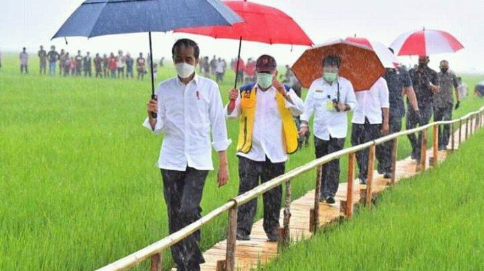 Berita Foto : Hujan Lebat