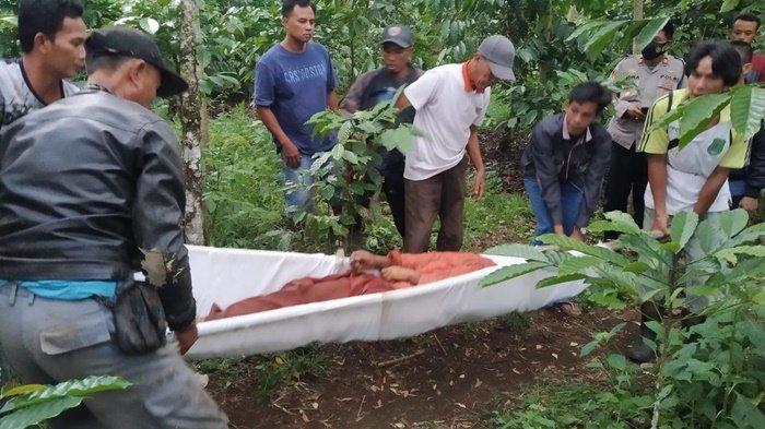 Kekhawatiran Riani Jadi Kenyataan, Sang Ayah Temui Ajal, Korban Ngotot Minta Diantar ke Kebun