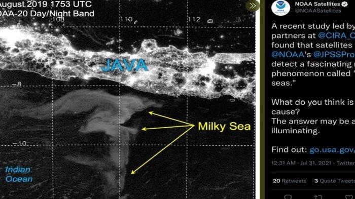 'SIAP-Siap Saja, Gempa Dahsyat,' MENDADAK Laut Jawa Bercahaya Saat Malam Hari: Ini Kata Ahli