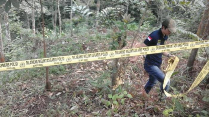 Lima 'Bandit Kelamin' Ini Minta Dihukum Mati, Hakim dan Penasihat Hukum Kaget